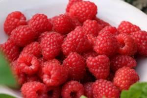 Витамин Р в малине
