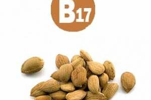 витамин в17